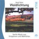 Stein, Arnd - Waldlichtung